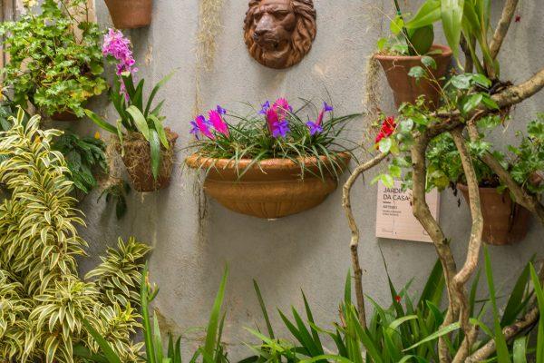 jardim-da-casa-1